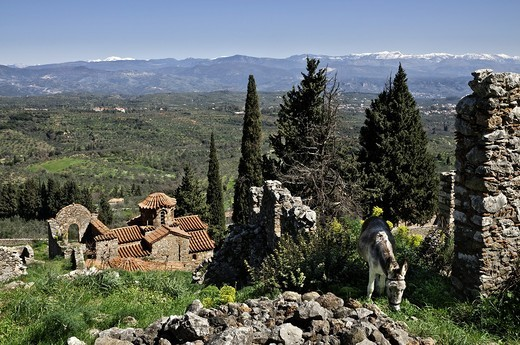 Stock Photo: 1566-767711 The hill of Mystra with its Byzantine ruins, looking towards mount Parnon in the, Peloponnese, Greece