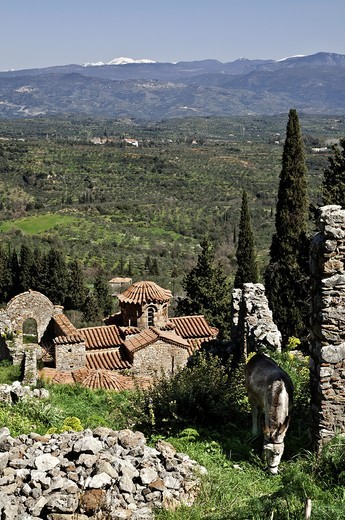 The hill of Mystra with its Byzantine ruins, looking towards mount Parnon in the, Peloponnese, Greece : Stock Photo