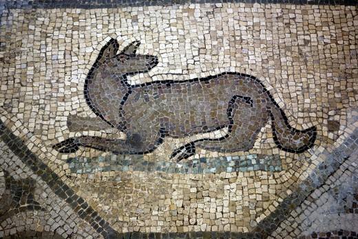 Stock Photo: 1566-770304 Floor mosaics 5th century, Basilica Santa Maria Assunta, Aquileia, Friuli-Venezia Giulia, Italy