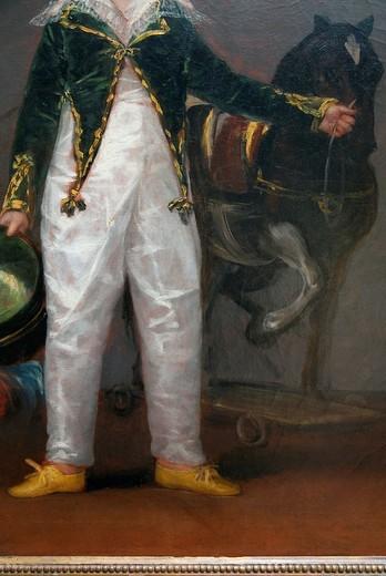 Stock Photo: 1566-773010 José Costa y Bonells, died l870, Called Pepito, by Francisco de Goya y Lucientes, Metropolitan Museum of Art, New York City