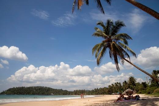tourists at the dream beach in Mirissa, Sri Lanka : Stock Photo