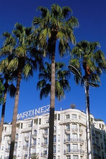 Stock Photo: 1566-776950 Prestigious hotel and casino in the Croisette avenue, Cannes, Alpes-Maritimes, French Riviera, Provence-Alpes-Côte d´Azur, France