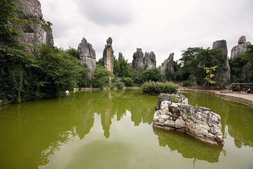 Stock Photo: 1566-778685 Shilin Stone Forest, Shilin, Yunnan, China