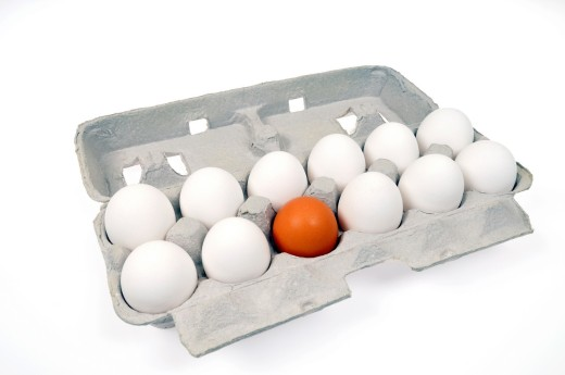 Stock Photo: 1566-781081 Concept of alienation and discrimination using white and brown eggs on in carton white background