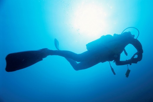 Stock Photo: 1566-791366 France marseille diver silhouette from below