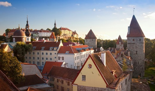 Towers of Old Medieval Tallinn City Skyline in Estonia : Stock Photo