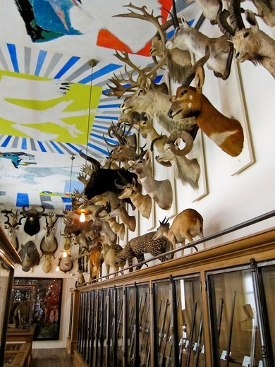 Stock Photo: 1566-796044 Paris, France, French Art Museum, Hunting Museum, Musée de la Chasse, inside, Installation of Hunting Trophies