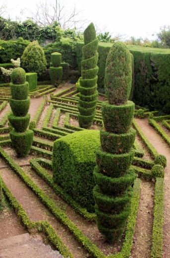 Stock Photo: 1566-797436 Topiary Botanical Gardens Funchal Madeira