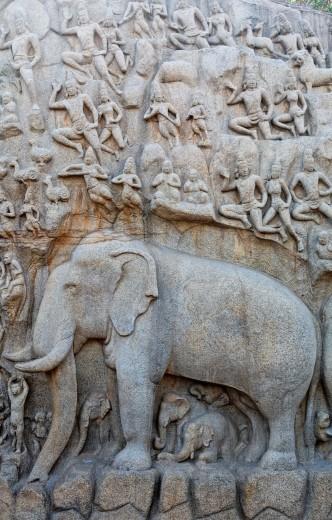 India - Tamil Nadu - Mamallapuram - elephant sculpture at Arjuna´s Penance : Stock Photo