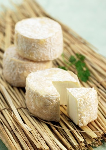French Cheese called Crottin de Chevre, a Goat Cheese : Stock Photo