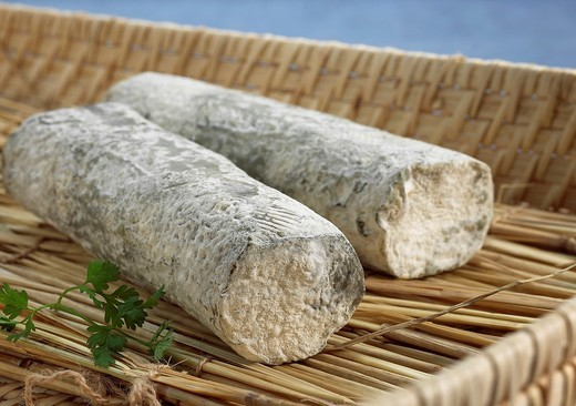 Stock Photo: 1566-802954 French Cheese called Sainte Maure de Touraine, Cheese made with Goat´s Milk
