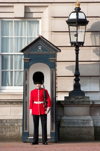 Stock Photo: 1566-803873 Queens guard marching at Buckingham palace, London, England