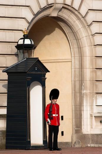 A Grenadier guard at Buckingham palace, London : Stock Photo