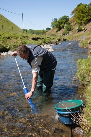 Man panning for gold nuggets in a river by sifting the riverbed near Wanlockhead, Lead Hills, Scotland : Stock Photo