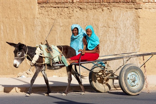 Stock Photo: 1566-808134 Women riding donkey cart on the street in Karima, Sudan