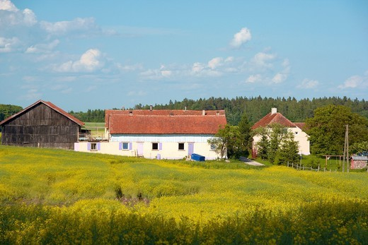Stock Photo: 1566-808766 Farm buildings Ledlawki village, Warmia region, Poland