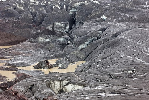 Stock Photo: 1566-808953 Ash fall on Svinafellsjokull from Grimsvotn volcanic eruption, Iceland  The landscape filled with ash, eruption began on May 21, 2011