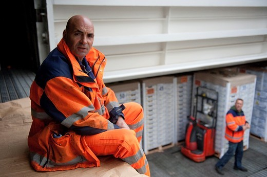 Stock Photo: 1566-809715 A harbourworker is monitoring the unloading of a cargoship in the Rotterdam harbour. It had arrived from South-Amrica with pallets of fruit.