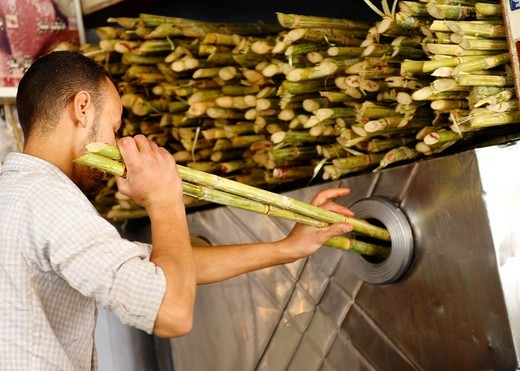 sugar cane being pressed to make fresh juice , Souq al Gomaa Friday Market in Cairo , Egypt : Stock Photo