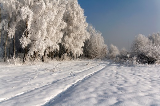 Road in winter : Stock Photo