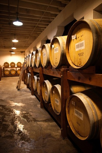 USA, California, Northern California, Russian River Wine Country, Korbel, Korbel Champagne Winery, champagne aging casks : Stock Photo