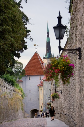 Stock Photo: 1566-818438 Gate and old city walls in Pikk Jalg,Tallinn,Estonia