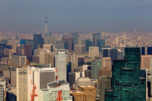 Stock Photo: 1566-818449 skyline of Tokyo In background at left the Sky tree tower Tokyo, Japan, Asia