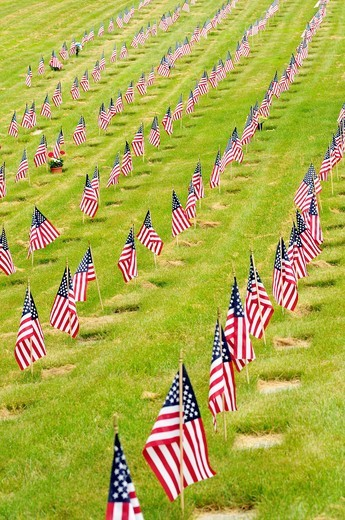 Stock Photo: 1566-819158 Rows of American Flags on the graves of American war veterans at the National Cemetery in Bourne, Cape Cod, Massachusetts, USA