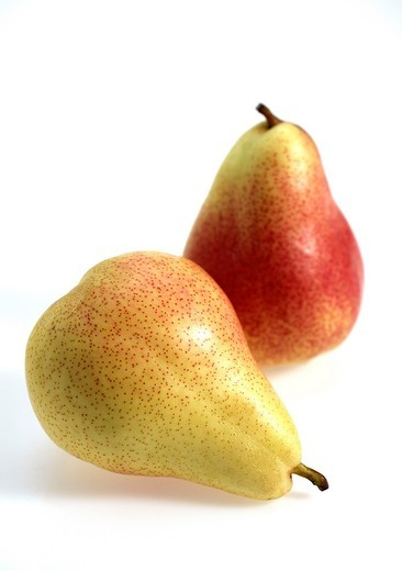 Stock Photo: 1566-819729 Rosemary Pear, pyrus communis, Fruits against White Background