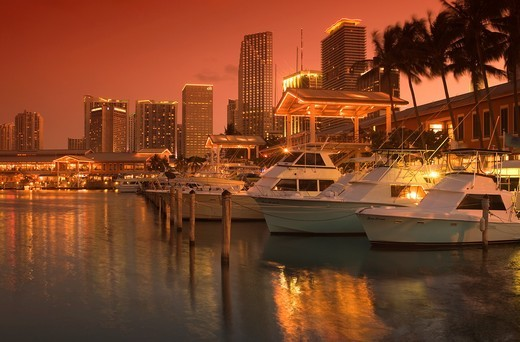 BAYSIDE MARKETPLACE MARINA DOWNTOWN SKYLINE MIAMI FLORIDA USA : Stock Photo