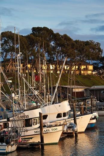 Stock Photo: 1566-829367 USA, California, Southern California, Morro Bay, harbor, dusk