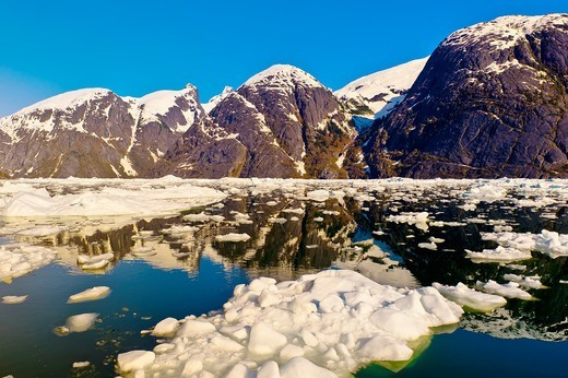Stock Photo: 1566-829936 Icebergs and ice floes, LeConte Bay near LeConte Glacier, between Petersburg and Wrangell, southeast Alaska USA