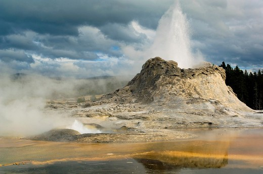 Geothermal steam and water venting out of Castle Geyser, Upper Geyser Basin, Yellowstone National Park, Wyoming : Stock Photo