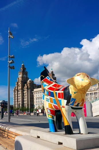 Bananalama street art, Waterfront, Liverpool, England, UK, Great Britain with the Royal Liver building in the background : Stock Photo