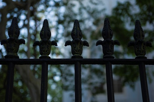 WROUGHT IRON RAILINGS QUEEN STREET DOWNTOWN CHARLESTON SOUTH CAROLINA USA : Stock Photo