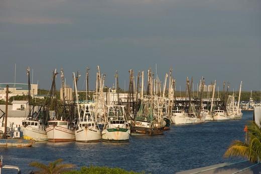 FISHING BOAT FLEET FISHERMANS WHARF INTERCOASTAL WATERWAY FORT MYERS BEACH FLORIDA USA : Stock Photo