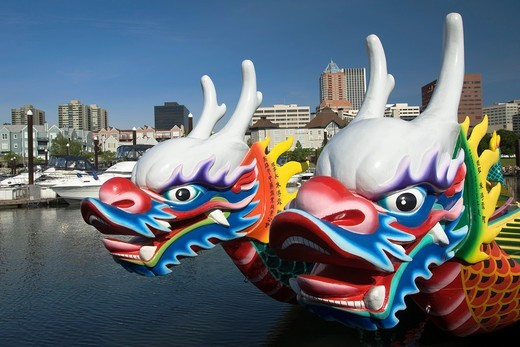 FACES OF DRAGON BOATS RIVER PLACE MARINA WILLAMETTE RIVER DOWNTOWN SKYLINE PORTLAND OREGON USA : Stock Photo