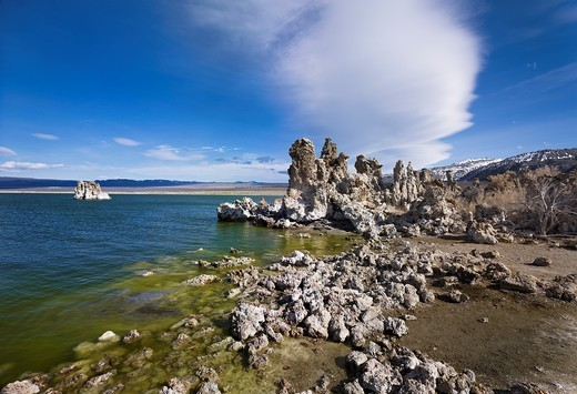 Mono Lake  California, USA : Stock Photo