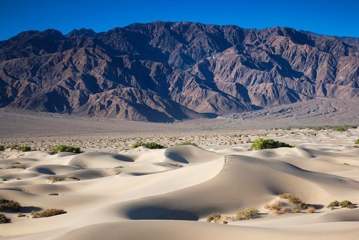 USA, California, Death Valley National Park, Mesquite Flat Sand Dunes, dawn : Stock Photo