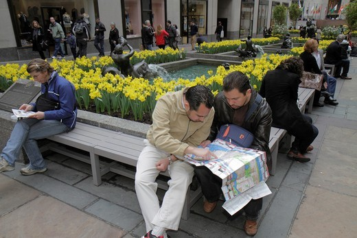 New York, New York City, NYC, Midtown, Manhattan, 5th Fifth Avenue, Rockefeller Center, Plaza, bench, visitor, Hispanic, man, men, reading map, daffodils, : Stock Photo