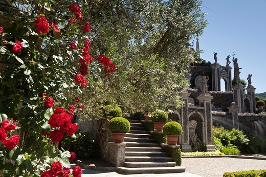 Stock Photo: 1566-844512 Garden of isola bella, Lake Maggiore, Italy.