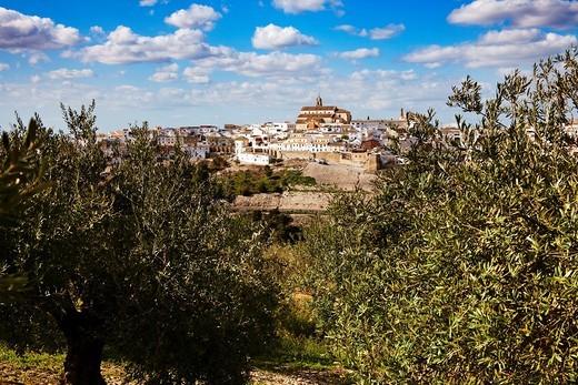 Baena, Cordoba province, Andalusia, Spain. : Stock Photo
