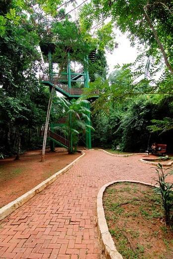 View of Parque Ambiental Chico Mendes, Rio Branco, Acre : Stock Photo