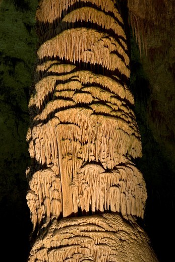 Stock Photo: 1566-848878 Large stalagmite in the Hall of Giants in Carlsbad Caverns National Park in southern New Mexico, USA
