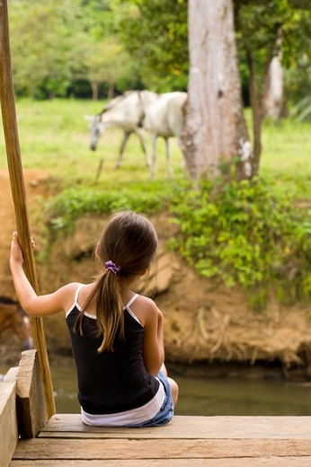 Stock Photo: 1566-848912 Costa Rican girl watching horses graze along the Sierpe River in Costa Rica