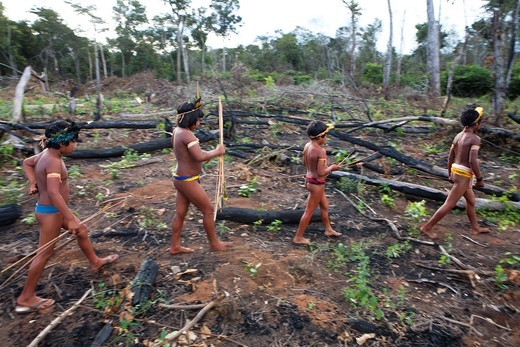 Stock Photo: 1566-850549 Xingu indians hunting in the Amazone, Brazil