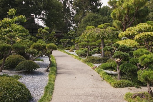 Japanese Gardens in Hayward, California, USA : Stock Photo