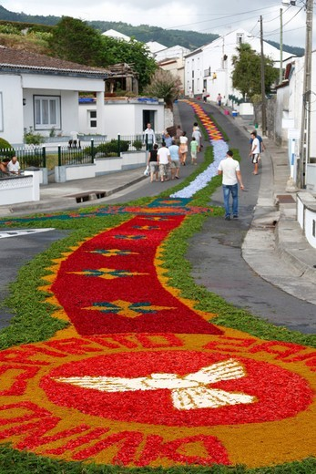 The streets in the parish of Ponta Garça decorated with flower carpets for the procession of Nossa Senhora da Piedade  Sao Miguel island, Azores : Stock Photo