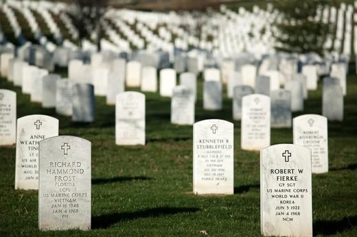 Rows of white grave markers fade into the distance in Arlington National Cemetery, Arlington, Virginia, USA : Stock Photo