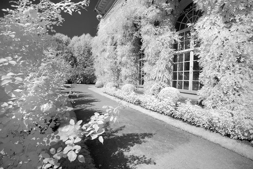 Infrared Image, Garden in Lancut, Poland, Europe : Stock Photo